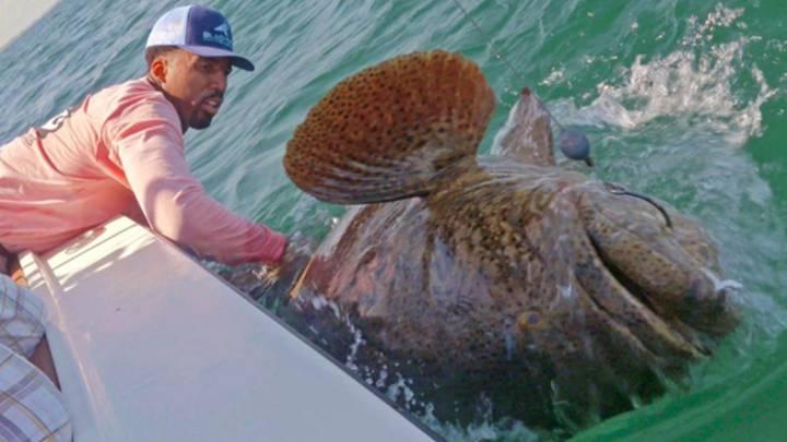 """Wilson Chandler pescó un """"monstruo"""" de más de ¡150 kilos!"""