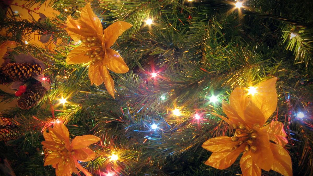 C mo reparar las luces de tu rbol de navidad - Luces arbol de navidad ...