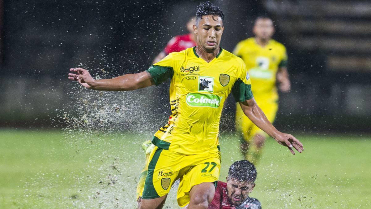 Leones golea a Llaneros y se acerca a la primera división