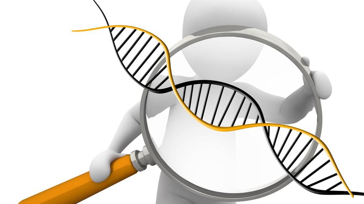 La medicina de precisión detecta el tratamiento más adecuado para la ...