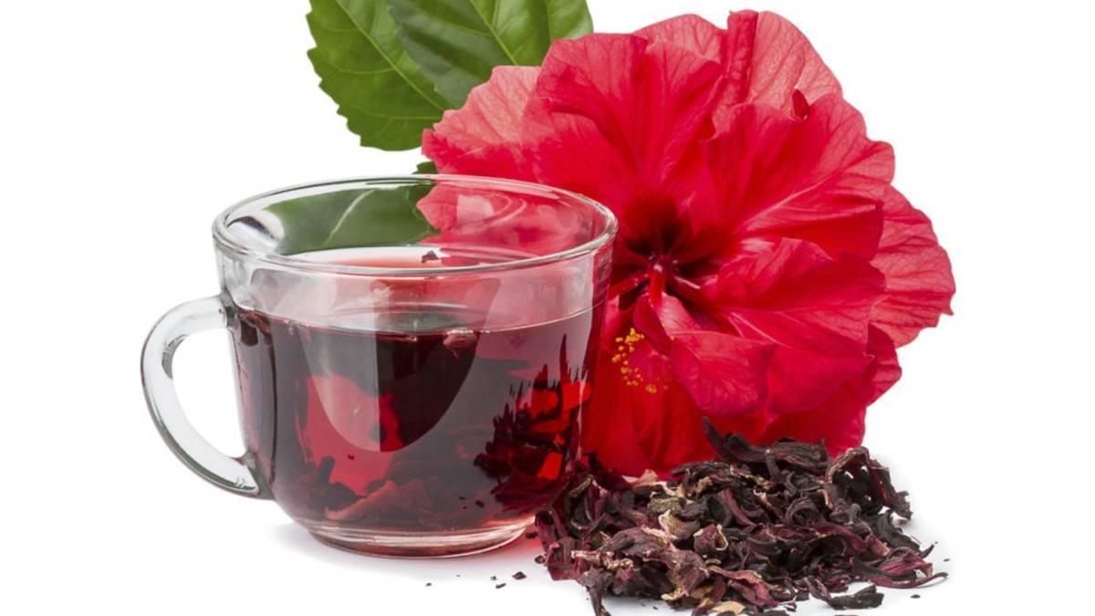 10 Propiedades De La Flor De Hibisco As Com