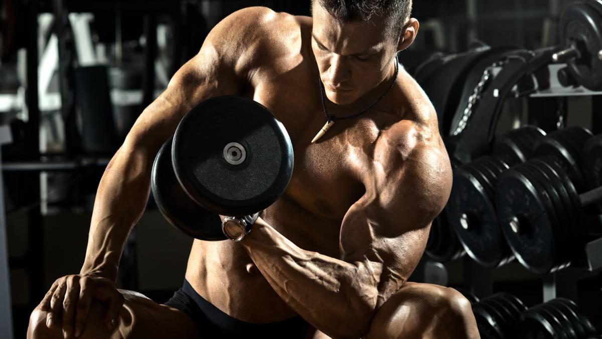 Cuánto tardan los músculos en recuperarse tras un entreno? - AS.com