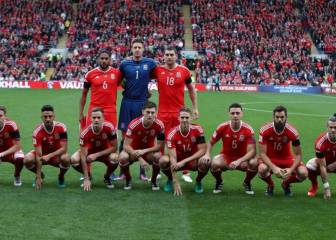 Wales to continue bizarre team photo tradition says Joe Ledley