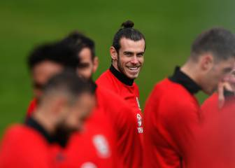 No special plan for brilliant Bale: Keane