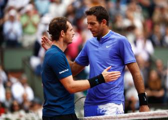 Murray sees off Del Potro to keep title tilt on track in Paris