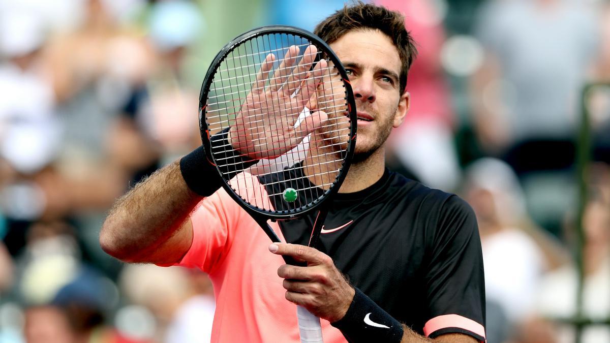 Juan Martin del Potro, Isner advance to quarters — ATP Miami Open