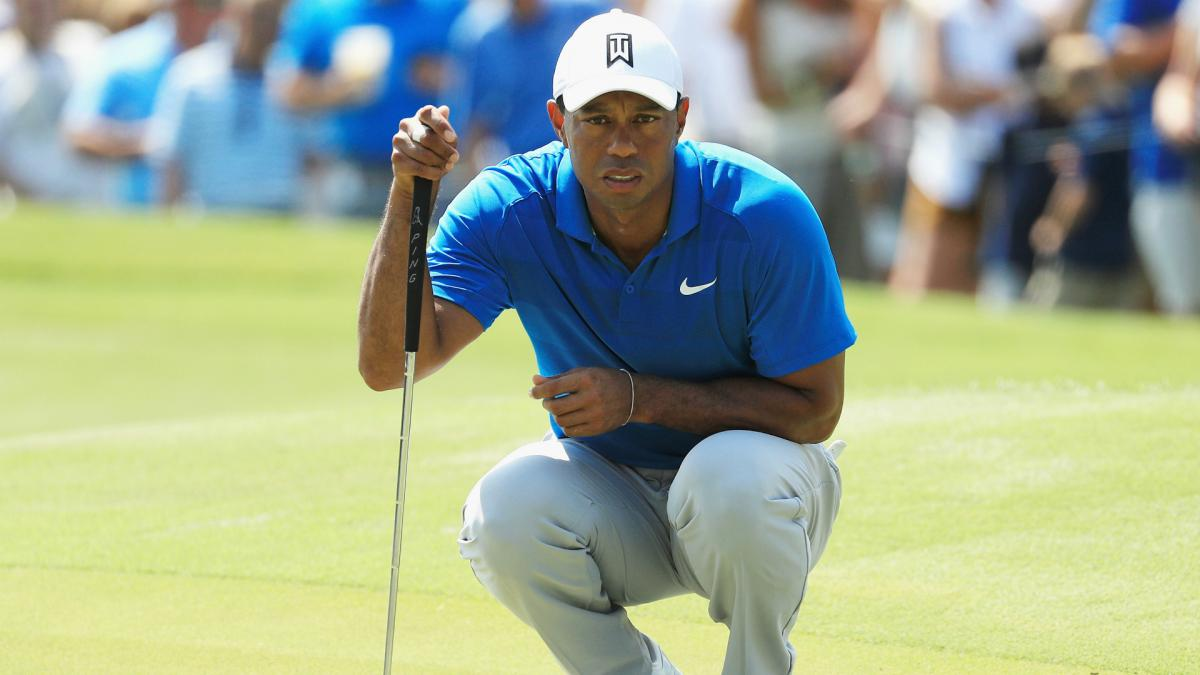 Tiger Woods pairing gave struggling pro butterflies - and birdies