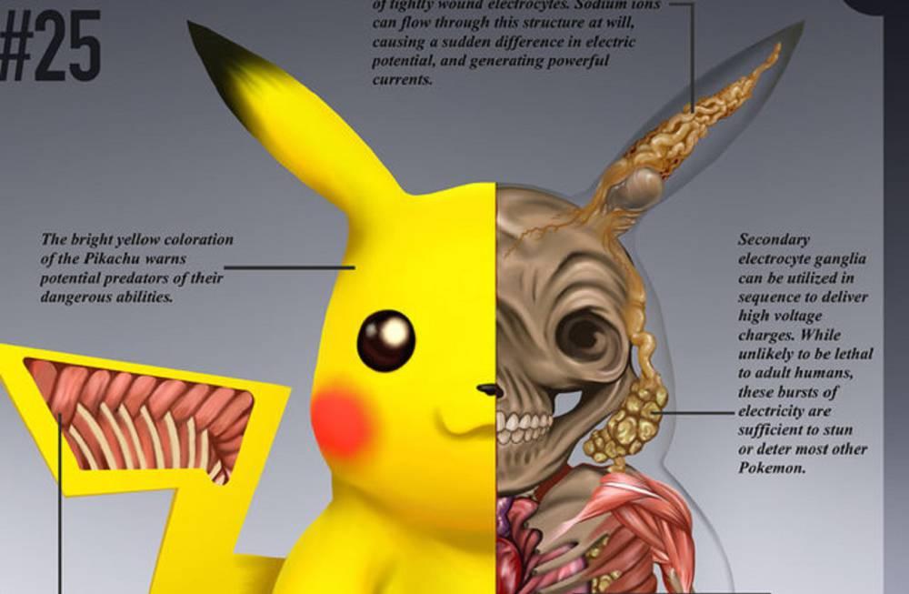 Pokémon - Este ilustrador \'disecciona\' a Pikachu para saber de dónde ...