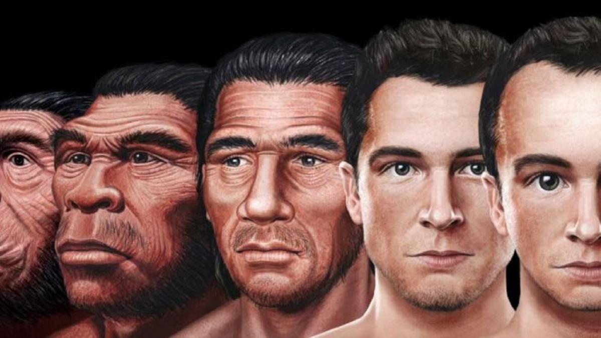 Científicos descubren cómo será el rostro humano en el futuro