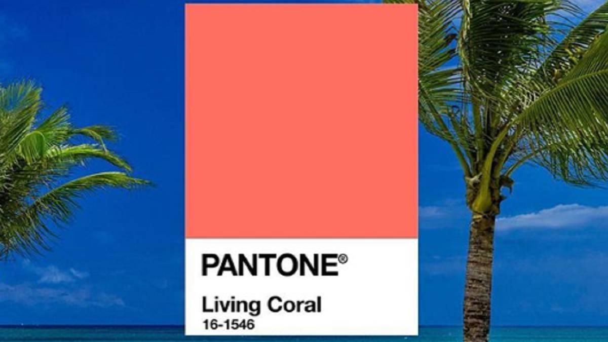 El 2019 ya tiene su color oficial: el coral vivo
