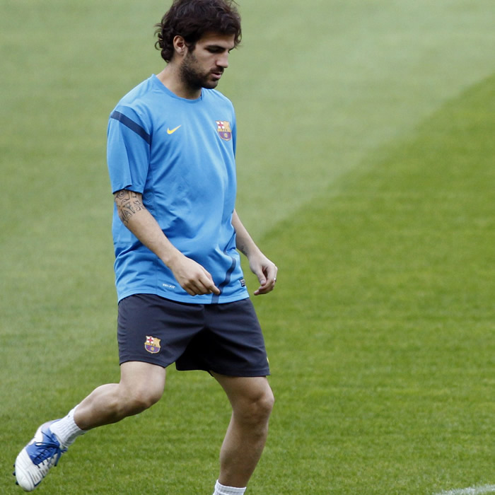Cesc recibe el alta médica y podrá jugar contra el Sevilla