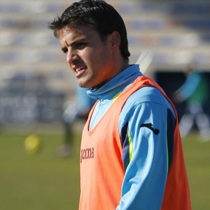 Pedro León permanecerá dos semanas de baja