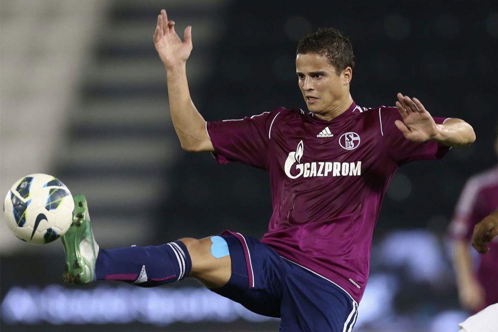 Afellay dejará el Schalke