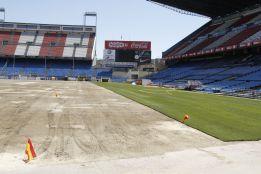El Atleti comienza la colocación del nuevo césped del Calderón