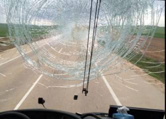 Un buitre retrasa el viaje de los aficionados rojillos a Alcorcón