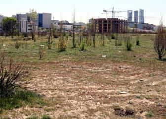UE: el Madrid deberá devolver al Ayuntamiento 18'2M€