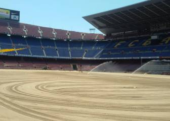 Royal Verd instalará el nuevo césped del Camp Nou