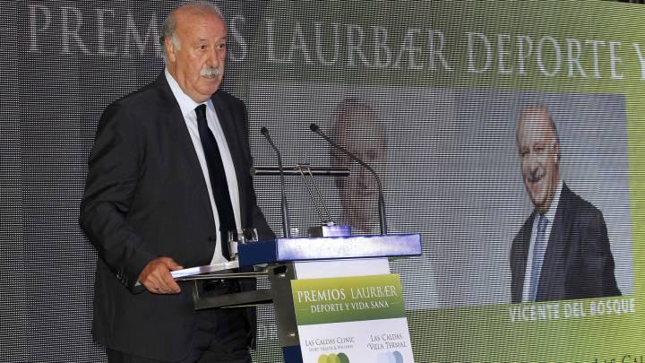 Del Bosque da las claves del batacazo de España en la Euro