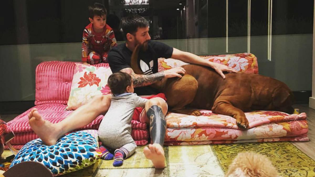 ლეო მესის მსოფლიოში ერთ-ერთი ყველაზე დიდი ძაღლი ჰყავს - ნახეთ რამხელაა არგენტინელის ოთხფეხა მეგობარი [ ფოტოები ]