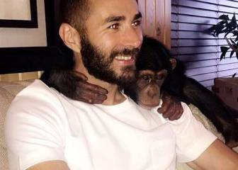 Monkey business: Benzema on holiday in Dubai with hirsute pal