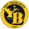 Escudo/Bandera Young Boys