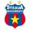 Escudo/Bandera Steaua