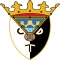 Escudo/Bandera CD Tudelano