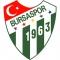 Escudo/Bandera Bursaspor