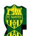 Escudo/Bandera Nantes