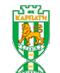 Escudo/Bandera Karpaty Lvov