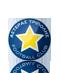 Escudo/Bandera Asteras Tripolis