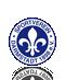 Escudo/Bandera Darmstadt 98