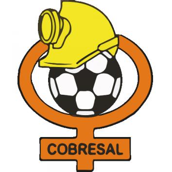 Escudo Cobresal