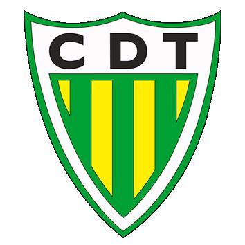 Escudo/Bandera Tondela