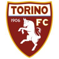 Escudo/Bandera Torino