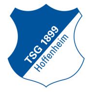 Escudo/Bandera Hoffenheim