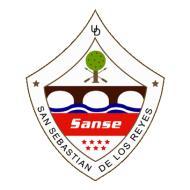 Escudo/Bandera SS de los Reyes