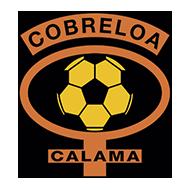 Escudo/Bandera Cobreloa