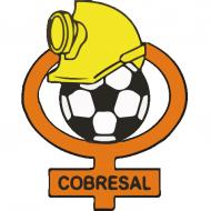 Escudo/Bandera Cobresal