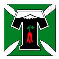 Escudo/Bandera Deportes Temuco