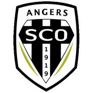 Escudo/Bandera Angers