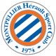 Armoiries / drapeau de Montpellier