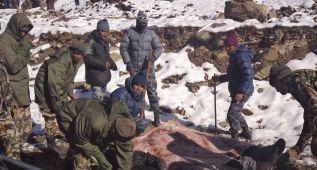 El número de supervivientes en Nepal aumenta a más de 400
