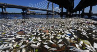 La bahía de Guanabara es la mayor preocupación de Río 2016