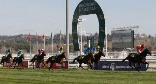 Donosti y Sevilla podrían ser los intermediarios para dar carreras