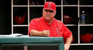 Mike Scioscia es el rey supremo en el caos de Los Ángeles Angels