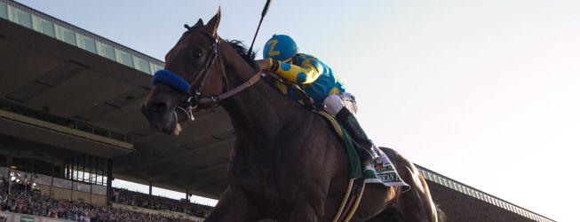 Un caballo se encuentra entre los 12 mejores deportistas