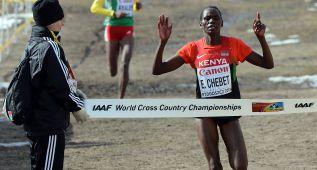 Kenia sanciona a Chebet, doble oro mundial, con cuatro años