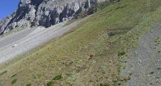 Fallece un montañero tras una caída en los Picos de Europa