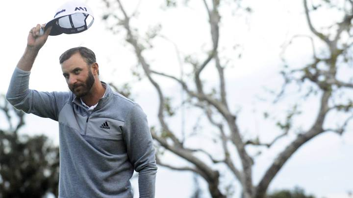 Dustin Johnson: \
